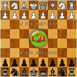 chess 12