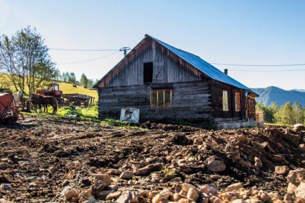 Федеральные министры будут курировать Алтай и Туву из-за бедности населения