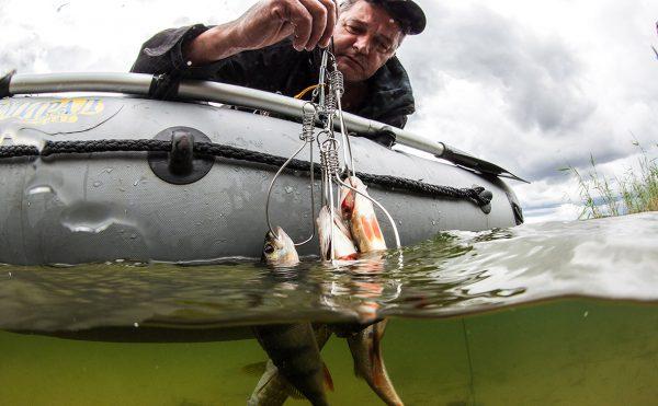 Росрыболовство озвучило детали новых правил любительской рыбалки
