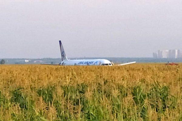 Самолёт с пассажирами вылетевший из Москвы сел в кукурузном поле. Есть пострадавшие
