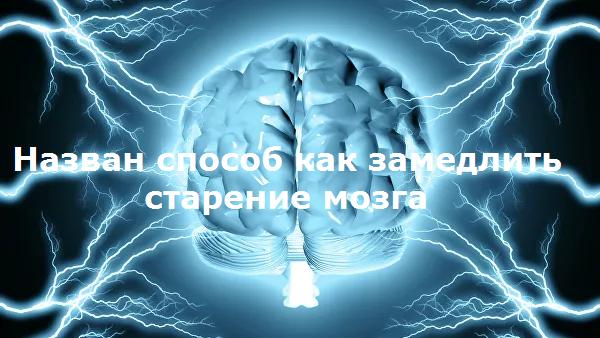 Найден способ как замедлить старение мозга