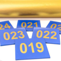 ddc2165f66d1d02a666eacb67a2b33c6