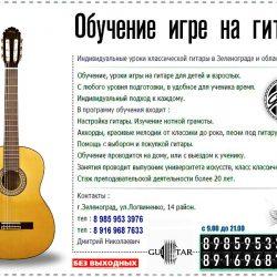 zp.guitar1