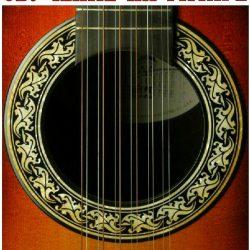 guitar.icon2