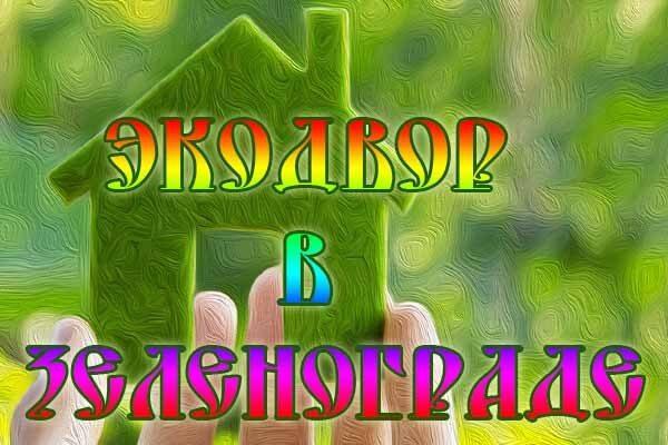 e-kodvor-v-zelenograde