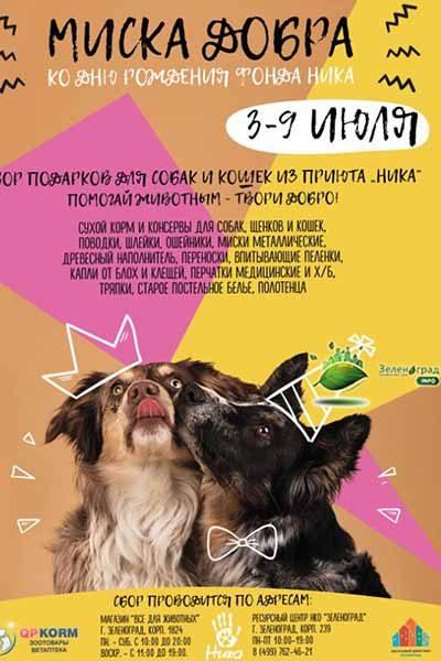 lekarstv-i-predmetov-gigieny-dlya-zelenogradskogo-priyuta-bezdomny-h-zhivotny-h
