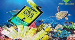 korallovy-j-kal-tsij-tvoj-vitamin-sashe-4