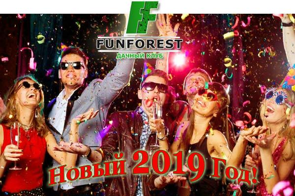 Новый Год встречаем в Фан Форест