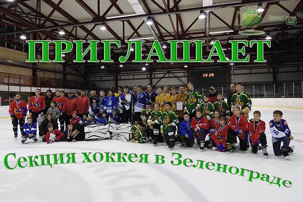 Набор детей в возрасте 9-12 лет в БЕСПЛАТНУЮ секцию хоккея с шайбой