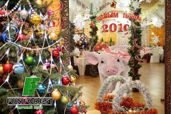 Где отметить новый год в Зеленограде!? Выходные в Подмосковье