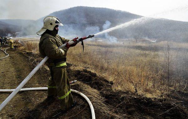 самый крупный лесной пожар в России